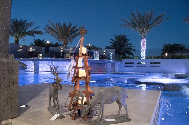 Pool includes reindeer