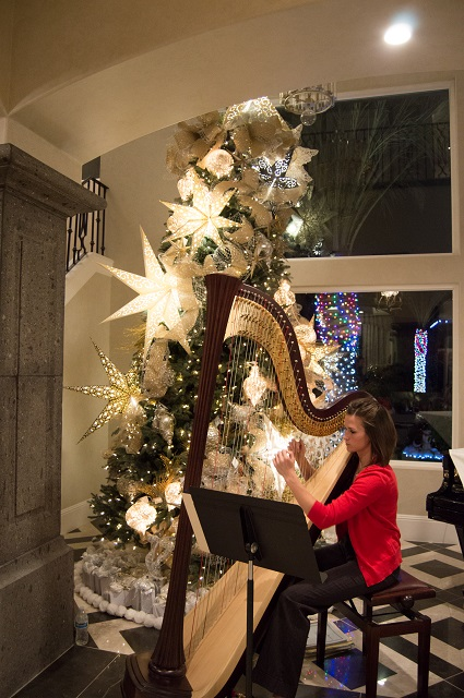 Harpist in the Entry
